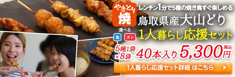 1人暮らし応援セット☆5種1袋×8袋の焼き鳥40本セット