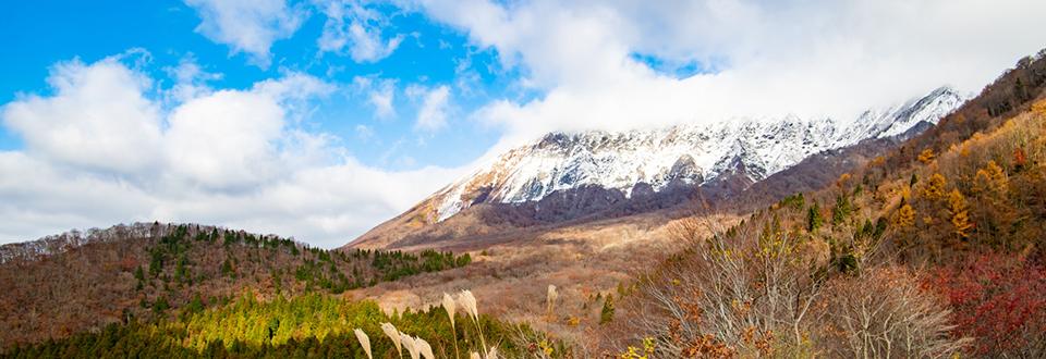 雪山の大山