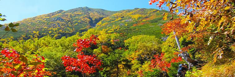 秋バーベキュー&キャンプは紅葉が楽しめるからおススメ!